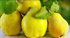 Kutine – slasten zalogaj in lepotna nega v enem Natural Health Remedies, Home Remedies, Beautiful Fruits, Cookies, Fruits And Vegetables, Health And Beauty, Pear, Berries, Healthy Recipes