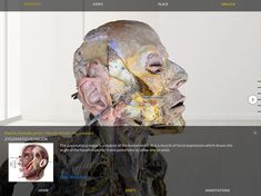 Human Anatomy, Augmented Reality, 3 D, Apps, Medical, Play, Store, Google, Storage