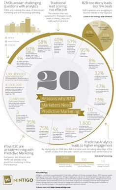 Mintigo Inforgraphic: 20 Reasons why B2B Marketers Need Predictive Marketing