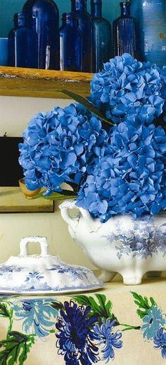 blue on blue on vintage blue | Hydrangeas