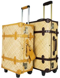 I wish Flight Attendants could carry beautiful luggage. Steamline Luggage