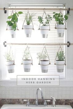 DIY Indoor Hanging Herb Garden // Learn how to make an easy, budget-friendly hanging herb garden for your window. It will make your house prettier and fill your gardening void during winter months. #hanginggardens #herbsgarden.. #herbsgardening