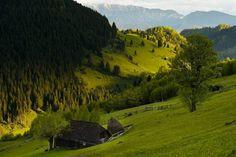 Moeciu de sus, Brasov County - photo by Vlad Dumitrescu Bulgaria, Golf Courses, Colours, Mountains, Landscape, Country, Nature, Photography, Travel