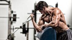 In der Praxis herrscht häufig Verwirrung darüber, wie man das Thema Muskelaufbau am besten anfassen sollte, sodass wir dir mit dem folgenden Artikel einen kurzen Leitfaden für die Massephase an die Hand geben möchten.