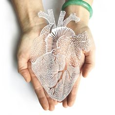 Intricate lasercutting of an anatomical heart. All Light and Paper designs begin with an original illustration, and then are hand cut with an x-acto knife. We then scan the design and convert it to be lasercut. This piece comes cut onto white or black paper. Measures approximately 6 x 10