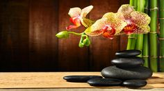 Zen Meditation Music Flute, Meditation Music Flute and Piano