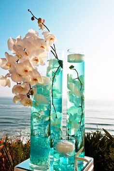 Cylinder Vase Centerpiece with white orchids - The Pampered Bride Blog