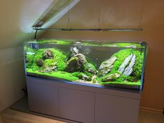 Aquascape is one hobby that is fun and also arguably pretty easily. Aquascape not only purchase the equipment and then designing the layout here and there. Aquarium Terrarium, Nature Aquarium, Planted Aquarium, Aquarium Aquascape, Aquascaping, Goldfish Aquarium, Aquarium Fish Tank, Nano Cube, Aquarium Stand