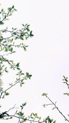 wallpaper backgrounds 50 Delightful Free Phone Wallpapers In 2019 Backgrounds Wallpapers Backgrounds Free iPhone Wallpapers Tumblr Wallpaper, Free Phone Wallpaper, Iphone Background Wallpaper, Aesthetic Iphone Wallpaper, Mobile Wallpaper, Aesthetic Wallpapers, Lion Wallpaper, Wallpaper Desktop, Ipad Background