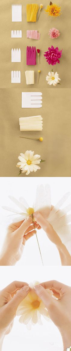 Very cool paper flower project.