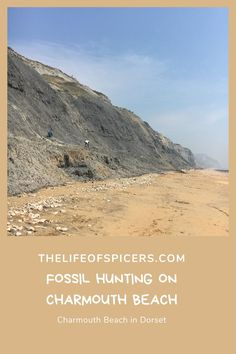 Charmouth Beach in Dorset is a great beach for fossil hunting. Dog friendly in certain areas, plenty of sand and stone beach Beach Cars, Beach Fun, Villages In Uk, Lulworth Cove, South West Coast Path, Fossil Hunting, Uk Beaches, Lyme Regis