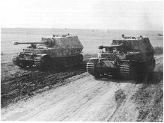 Two Porsche Tiger (P)  Ferdinands sitting side by side In open country