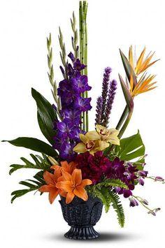 Tropical arrangement: