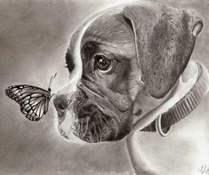 Dog and Butterfly - 10 Lovely Dog Drawings for Inspiration, http://hative.com/dog-drawings/,