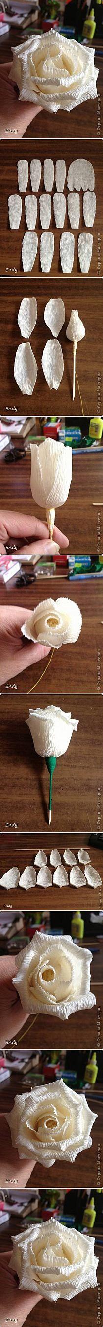 DIY Easy Corrugated Paper Rose DIY Easy Corrugated Paper Rose by diyforever Faux Flowers, Diy Flowers, Fabric Flowers, Flower Diy, White Flowers, Tissue Paper Flowers, Paper Roses, Diy Paper, Paper Crafts
