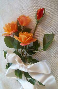 Beautiful Roses🌹 - Koleksiyonlar - Google+