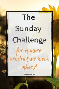 Tips on how to make your Sunday more productive for an even better week ahead. Take this Sunday challenge and change your life - only 5 simple steps - and shift your mindset for a better week. Waking Up Tired, Daily Organization, Overwhelmed Mom, Getting A Massage, Daily Planner Printable, Productive Day, Write It Down, About Time Movie, Love You More
