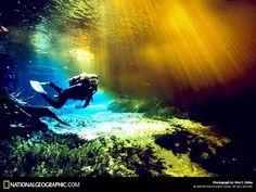 Ginnie Spring Dive,Wes Skiles 2005