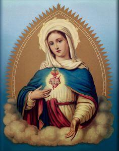 Cum Petro et sub Petro: Semper: Sábado de Desagravo ao Imaculado Coração de Maria   Imaculado Coração de Maria, sede a nossa salvação.