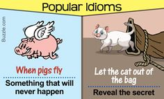 Interesting Idioms and Their Meanings That are Sure to Amaze You