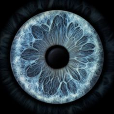 56 Ideas Eye Iris Drawing Universe For 2019 Pretty Eyes, Beautiful Eyes, Zbrush, Texture Photoshop, Iris Drawing, Eye Texture, Lasik Eye Surgery, Realistic Eye Drawing, Eyes Artwork