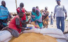Australia Helps WFP Feed South Sudanese In Sudan (17 September 2015, Photo: WFP/Ala Kheir)