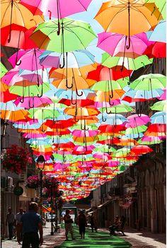 Umbrella Sky. Photo by Patricia Almeida