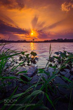 Towards the sun #PatrickBorgenMD