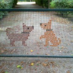 x stitch dogs on fence: Vienna