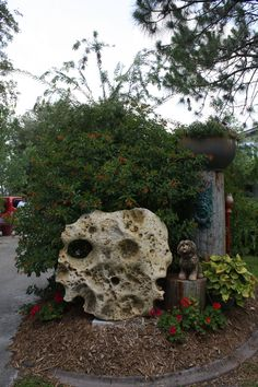 Coral Rock that looks like a skull.
