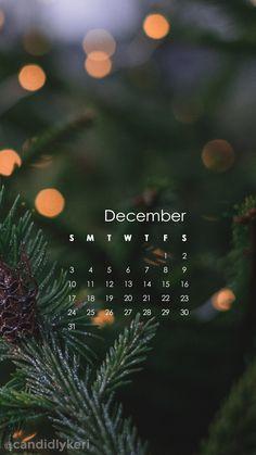 2017_December11M.jpg