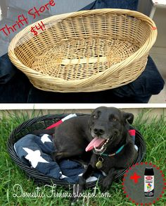 Thrift Store Finds: Dog Bed Krylon Upcycle by Domestic Femme