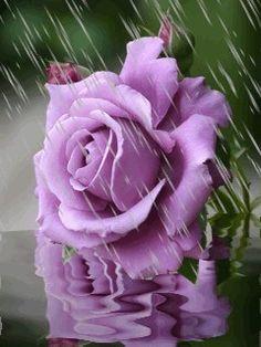 Yağmur seninle güzel