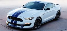Mustang Cult - Win a 2017 Ford Shelby GT350 Worth $65,000 - http://sweepstakesden.com/mustang-cult-win-a-2017-ford-shelby-gt350-worth-65000/