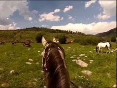 Through the ears summer ride with Vista Verde Ranch in Colorado