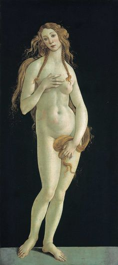 Venus - Sandro Botticelli.  Currently on show at the V&A Botticelli Reimagined exhibition