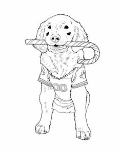Air Bud Coloring Pages by Angela