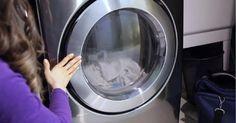 Les poils d'animaux collent à vos vêtements même après la lessive? Essayez ces…
