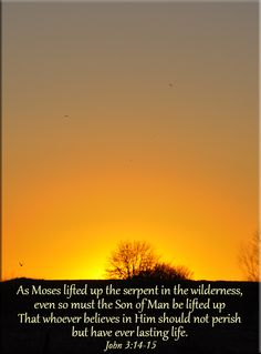 Day 23: Wilderness - As Moses lifted up the serpent in the wilderness, even so mus the Son of Man be lifted up, that whoever believes in Him should not perish but have eternal life. John 3:14-15 #rethinkchurch #40days #Lent