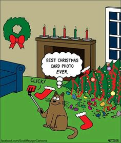 Scott Metzger draws these adorably funny kitty cartoons and we just had to share! Christmas Comics, Christmas Jokes, Christmas Cartoons, Christmas Cats, Merry Christmas, Crazy Cats, I Love Cats, Cool Cats, Funny Animal Pictures