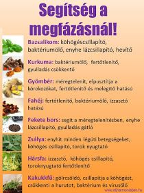 gyógynövények megfázásra Health And Beauty, Health And Wellness, Health Tips, Health Fitness, How To Eat Grapefruit, Negative Calorie Foods, Nutrition, Diets For Beginners, Healthy Diet Recipes