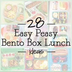 Lots of great ideas, but be very careful for how you make this lunch depending on what your kid likes and their age. Ask them what they would think of the lunch then pack it