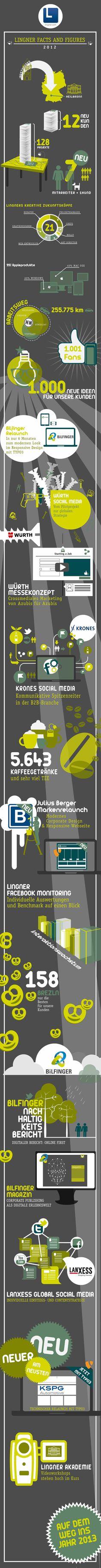 Lingner Facts and Figures 2012 #infografik