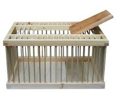 Image result for wooden chicken crate