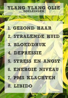 Ylang Ylang olie - Alles Over Mondgezondheid 2020 Doterra Blends, Doterra Oils, Young Living Oils, Young Living Essential Oils, Eco Beauty, Relaxing Yoga, Vallejo Paint, Healing Herbs, Aromatherapy