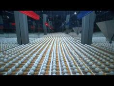 2,014 mousetraps and 2,015 Ping-Pong balls create ultimate chain reaction