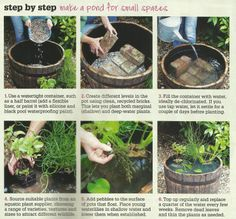 Making a mini pond - courtesy of ABC's Gardening Australia Magazine (May 2013). Yeah I suck at scanning..