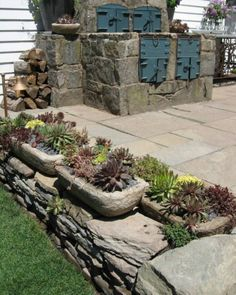 Hervorragend Garten Designs Mit Dekoration Von Sukkulenten