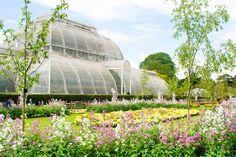 Image result for kew gardens