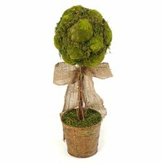 Moss Topiary, 20 in.